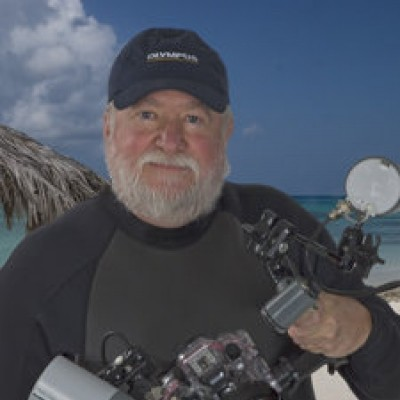 Bob Hahn